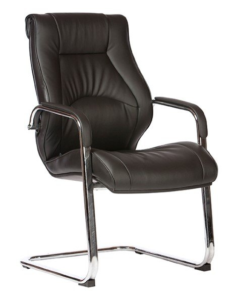 Camry Cantilver Chair