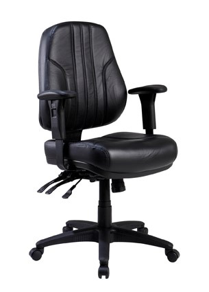Rover Mid Back Executive Chair